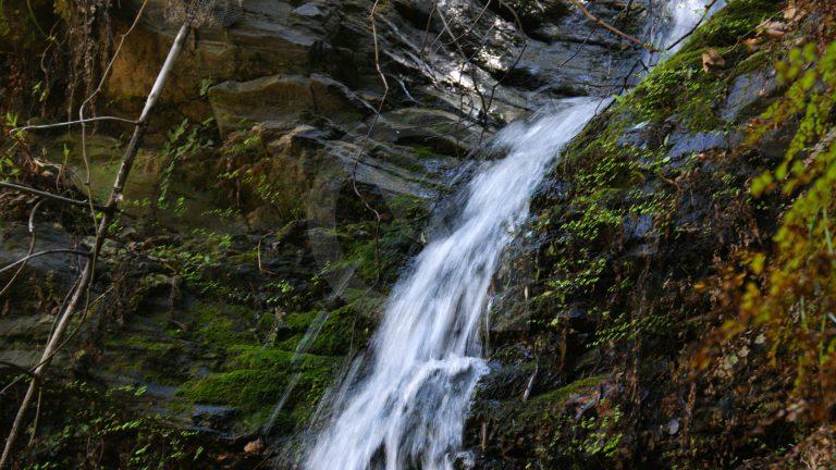 Cretan Hikes: Santorinios Gorge